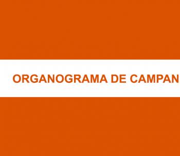 [Infográfico] Organograma de campanha eleitoral